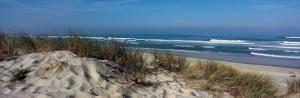 dune-biscarrosse